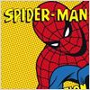 Spider-Man (1994) en Streaming gratuit sans limite | YouWatch S�ries poster .0