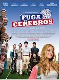 Fuga de cerebros