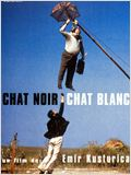 Chat noir, chat blanc