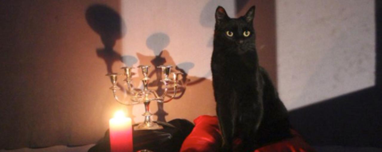 Sabrina : un premier aperçu de Salem dans le reboot de Netflix