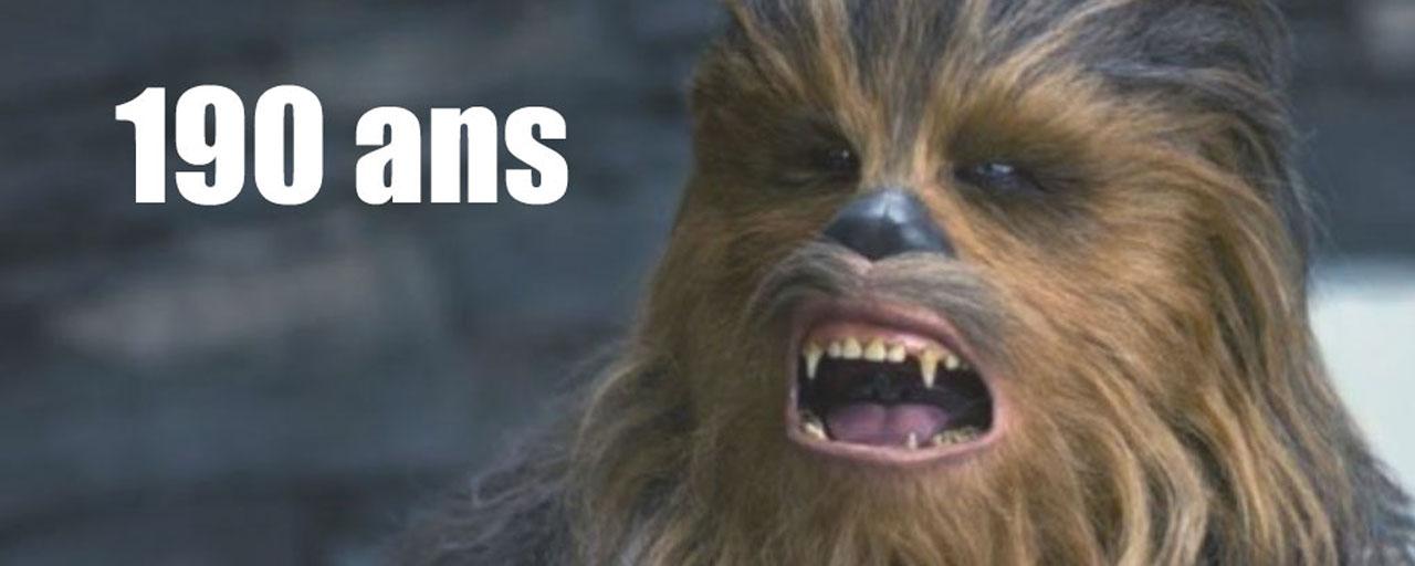 Chewbacca, Gollum, Yoda... Savez-vous quel âge ont ces personnages de la pop culture ?