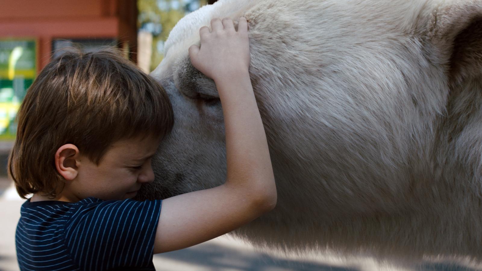 Disney+ : Timmy Failure, une ode drôle et décalée à l'imagination des enfants, par le réalisateur de Spotlight