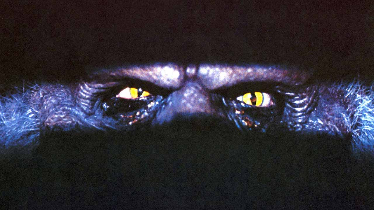 Creepshow (Paris Première) : avant la série, un film culte de Stephen King et George Romero