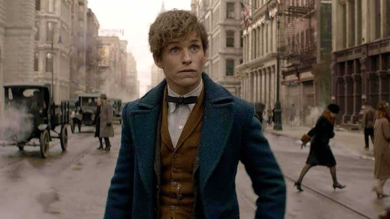 Les Animaux Fantastiques : 18 références à Harry Potter dans le film