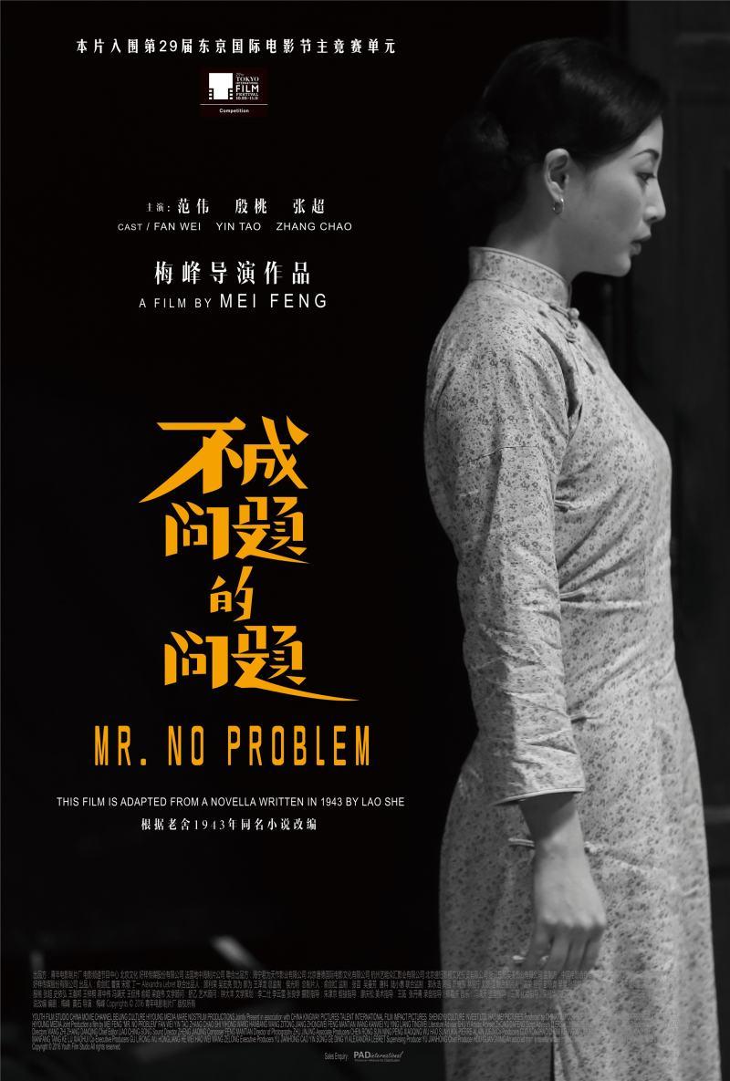 Mr No Problem