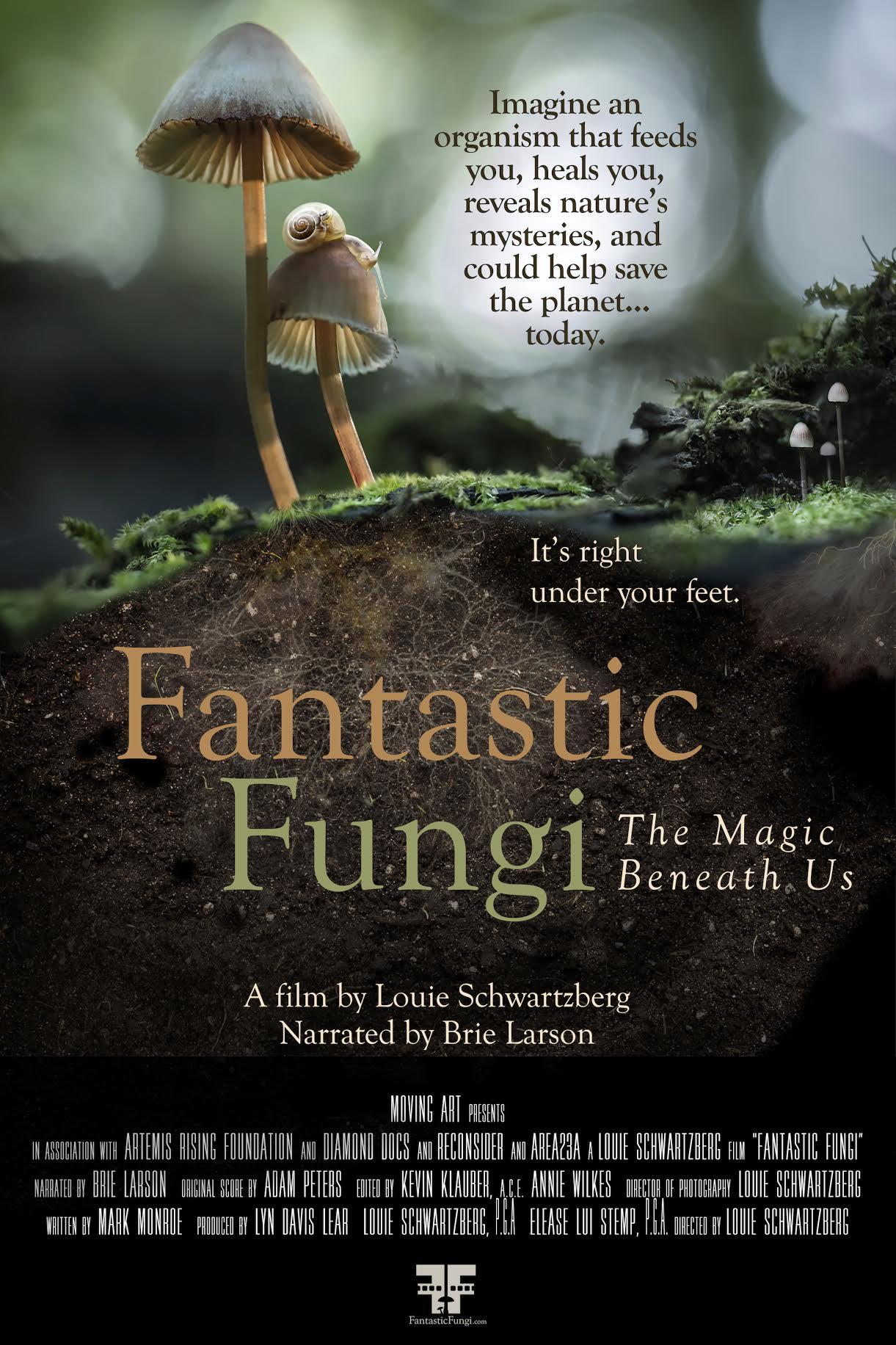 Image du film Fantastic Fungi