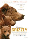 Photo : Grizzly