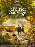 Photo : Le Poirier sauvage
