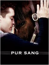 Regarder Pur Sang, la légende de Seabiscuit en streaming