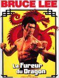 Télécharger La Fureur du dragon Dvdrip fr