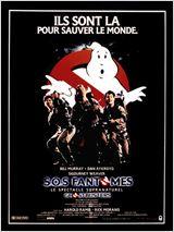 S.O.S. Fantômes (2014)