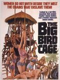 The Big Bird Cage