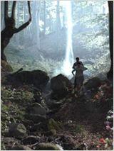 Les Secrets de la forêt noire (TV) affiche