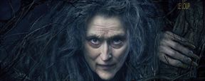 Into The Woods : la sorcière Meryl Streep s'affiche !
