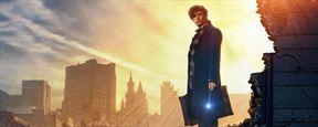 En attendant Les Animaux Fantastiques, J.K. Rowling vous présente l'école de magie Ilvermorny !