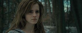 Harry Potter : la maison d'Hermione également mise à la vente !