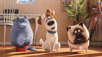 """Comme des bêtes (Netflix) : saviez-vous qu'un membre de """"La Bande à Fifi"""" prêtait sa voix à l'un des animaux du film ?"""
