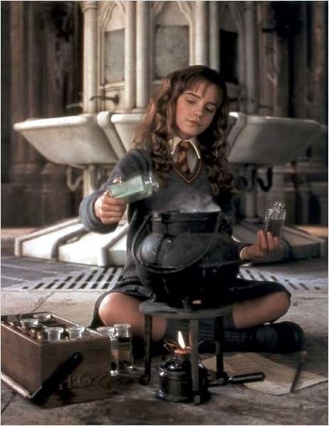 Harry Potter et la chambre des secrets : Photo Chris Columbus, Emma Watson