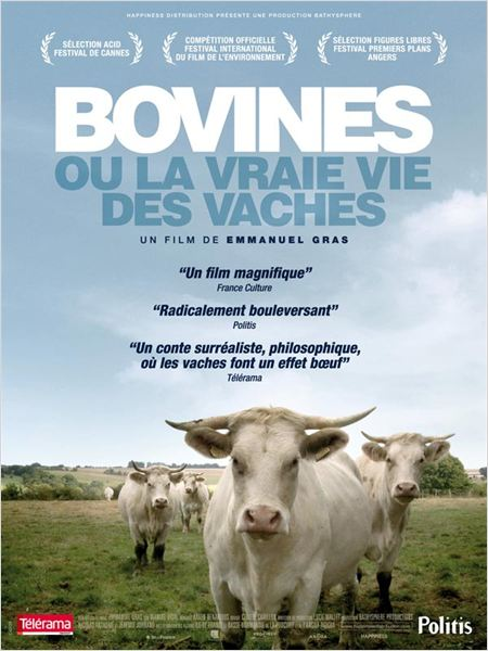Bovines : affiche