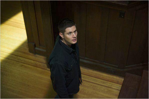 Supernatural photo de jensen ackles 243 sur 1 309 allocine - Jensen ackles taille ...