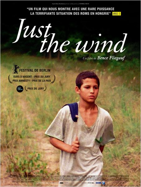 TELECHARGER Just the Wind  VOSTFR DVDRip STREAMING