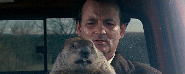 Un jour sans fin diffusé en boucle pour le jour de la marmotte
