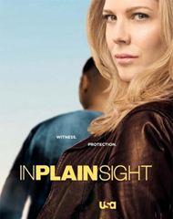 Affiche de la série In Plain Sight