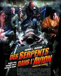 Affiche du film Des serpents dans l'avion