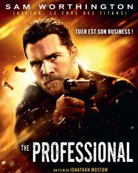 Affiche du film The Professional