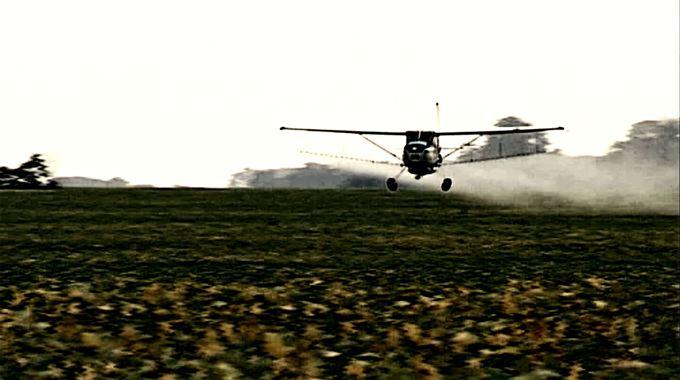 Photo du film Le Grain et l'ivraie