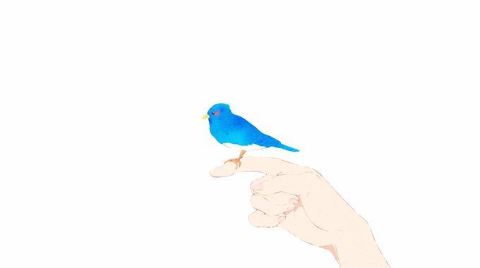 Photo du film Liz et l'oiseau bleu