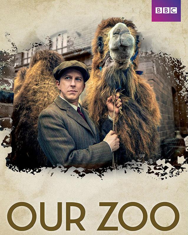 Affiche de la série Our Zoo