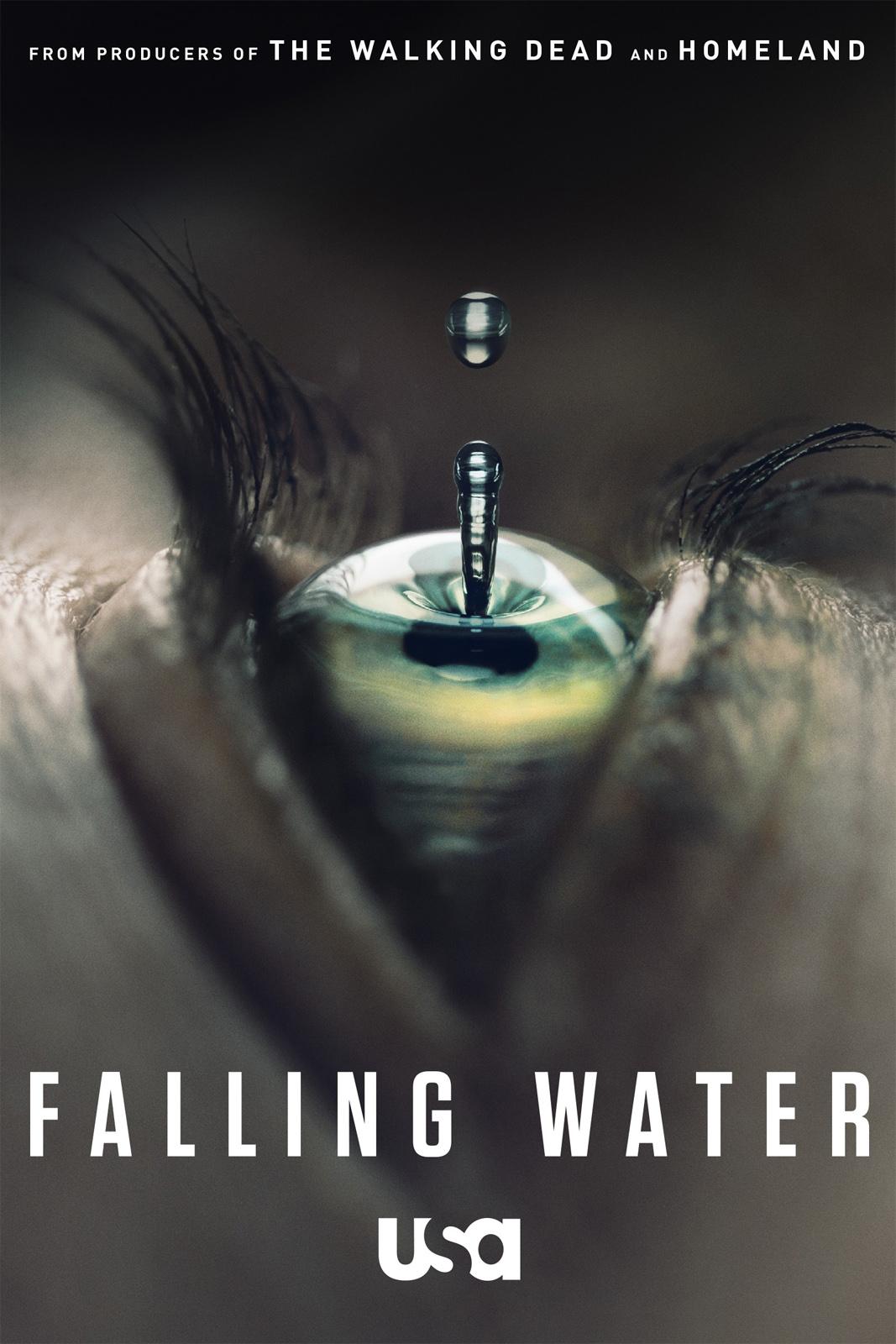 Affiche de la série Falling Water